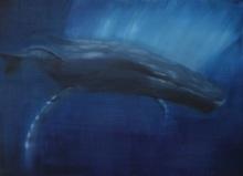 Baleine Bleue - Huile sur carton - 50 x 70 cm - Février 2011